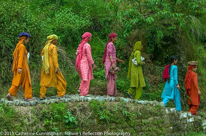 India_656