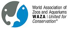 waza2