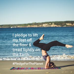 pledge5-yoga-300