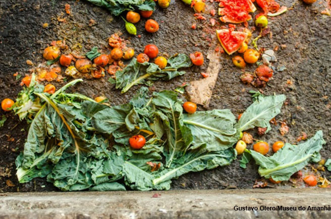 Food losses and waste: a challenge to sustainable development