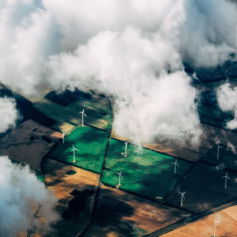 Overshoot Day: già consumate le risorse rinnovabili della Terra/ LA REPUBBLICA