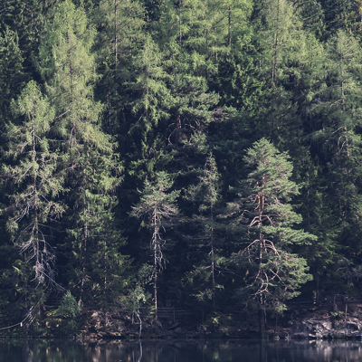 Sols, forêts, poissons… Depuis le 8 août, l'humanité vit à crédit En savoir plus sur / LE MONDE