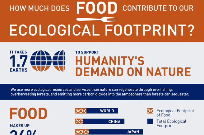 How much does food contribute to our Ecological Footprint?