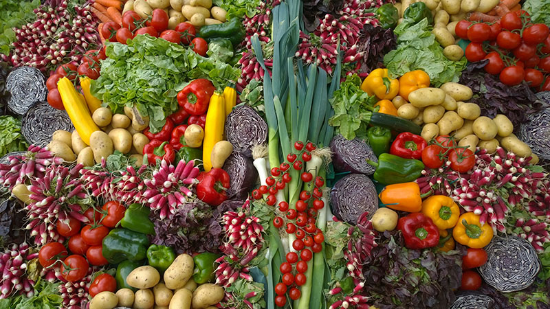 spread of colorful vegetables