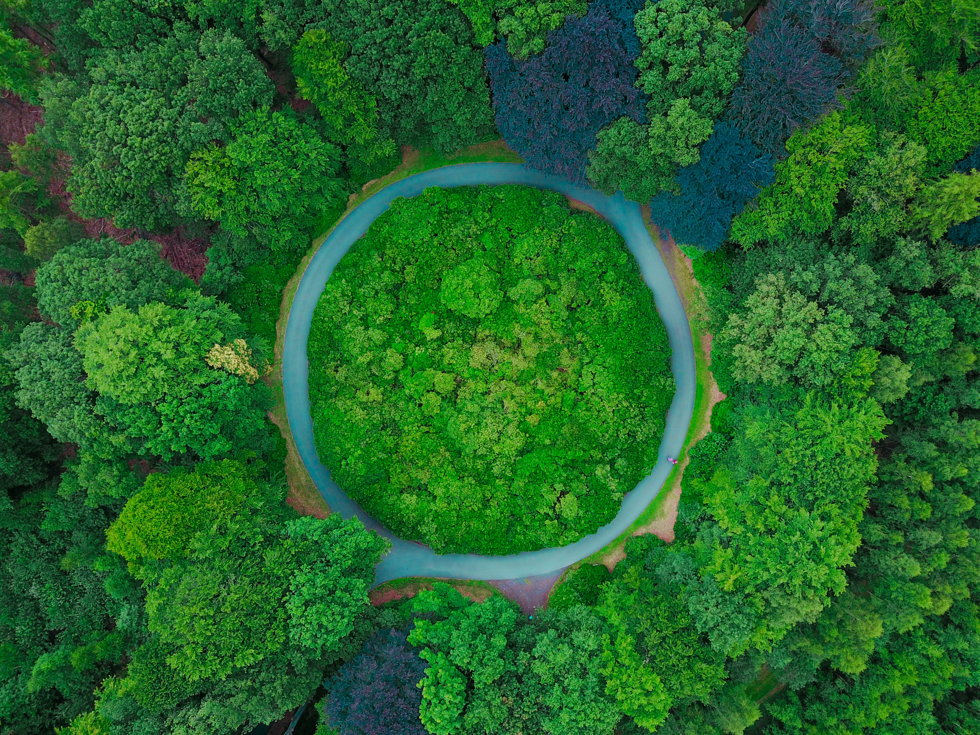 Earth Overshoot Day 2019 is July 29