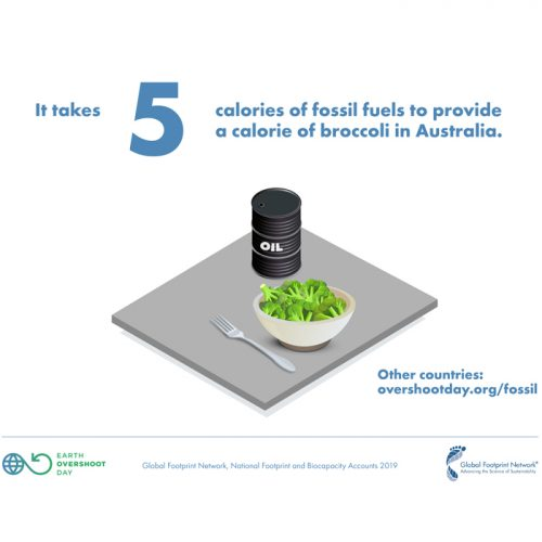illustration of broccoli and oil barrel on table