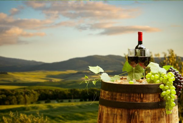 wine and grapes with valley in background